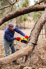Man Using Small Chainsaw To Cut Large Fallen Branch