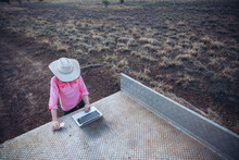Farmer Using Laptop In Tray Of...