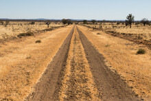 Track In A Dirt Road