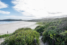 Landscape View Of Sandy Beach With Green Shrubs