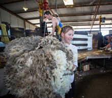 Wool Handler Carrying Fleece I...