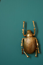 A Golden Beetle Against A Gree...