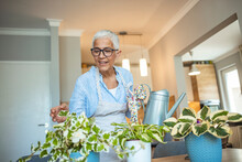 Senior Woman With Green Plants...