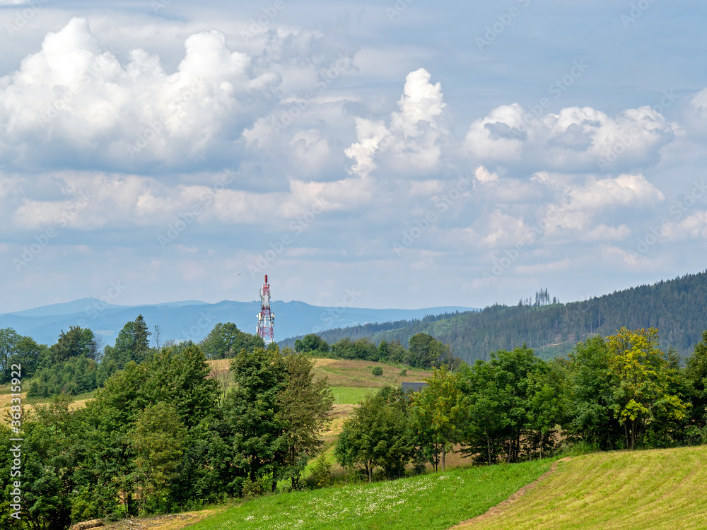 View of the top of the Zloty Gron hill, Silesian Beskids, Poland