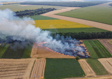 Mowing Of Straw Burning In The Field, Burning Of Wheat Residues, Air Pollution. Smoke In The Field.