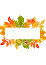 Watercolor Autumn Beautiful Frame Of Yellow And Red Leaves, Chestnut, Acorn, Amanita Mushroom