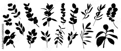 Set of floral vector elements Fototapet
