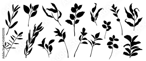 Photo Tropical leaves vector collection