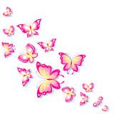 butterfly716