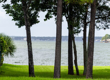 A View Through Trees Of Lake Conroe In Texas.