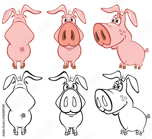Obraz Vector Illustration of a Cute Cartoon Character Pig for you Design and Computer Game. Coloring Book Outline Set  - fototapety do salonu