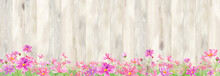 木のフェンスのある、コスモスが咲く庭。水彩イラスト。シームレスパターン。