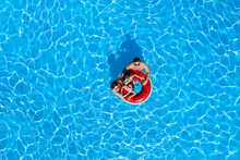 Happy Family With Inflatable Ring In Swimming Pool, Top View. Summer Vacation