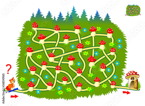 Obraz Logic puzzle game with labyrinth for little children. Help the fox find the way till his house. Printable worksheet for kids brain teaser book. IQ test. Online playing. Vector cartoon illustration. - fototapety do salonu