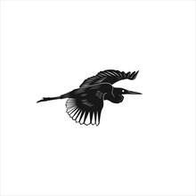 Black Crane Stork Heron Egret ...