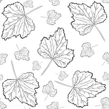 Seamless Wallpaper. Coloring. Autumn Leaves Are Falling. White Background. Suitable For Packaging, Fabrics, Wallpapers And Simple Colors.