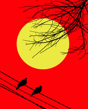 Red Orange Light On Sunset Sky Over Silhouette Of Dead Trees And Silhouette Of Birds On Electrical Wire