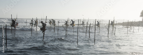 Fotografia, Obraz Traditional stilt fishermen angling in the Indian Ocean near Koggala, Sri Lanka