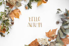 Phrase Hello Autumn With Fall Leaves