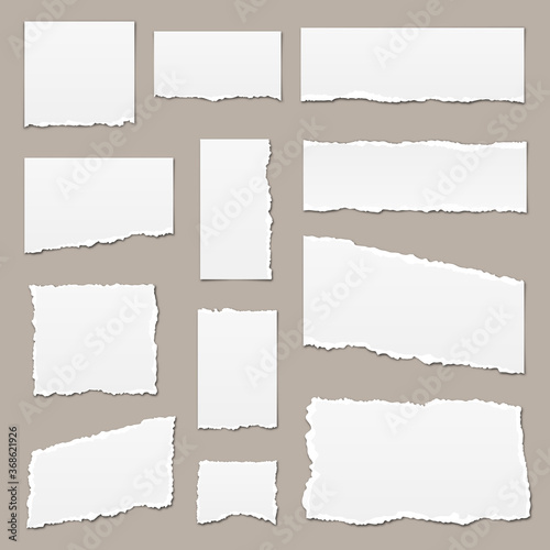 Obraz White torn paper. Torn paper scraps. Paper pieces isolated. Ripped paper strips - fototapety do salonu