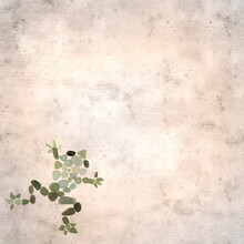 Textured Stylish Old Paper Background, Square, With Seaglass Frog