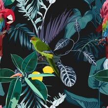 Tropical Night Vintage Wild Bi...