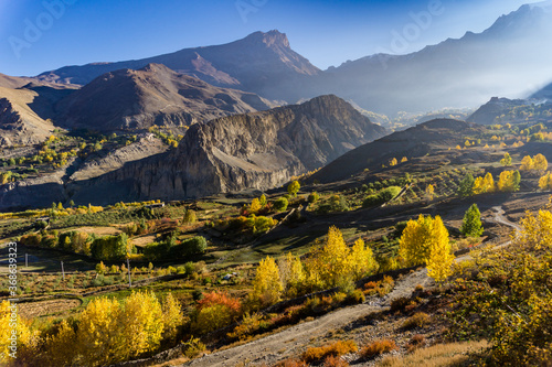 Leinwand Poster Poplar trees turning orange and yellow in the mountain landscape during the autumn season near Muktinath temple in Mustang, Nepal