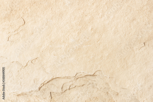 Sandstone texture. Natural background for your design. Canvas Print