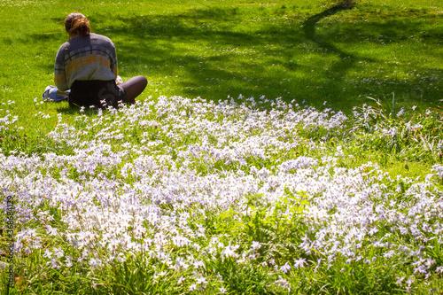 Valokuvatapetti Studying in Grosvenor Park in London