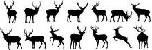 Set Of Deer Silhouette, Flat Vector Illustration