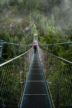 A Suspension Bridge Connects T...