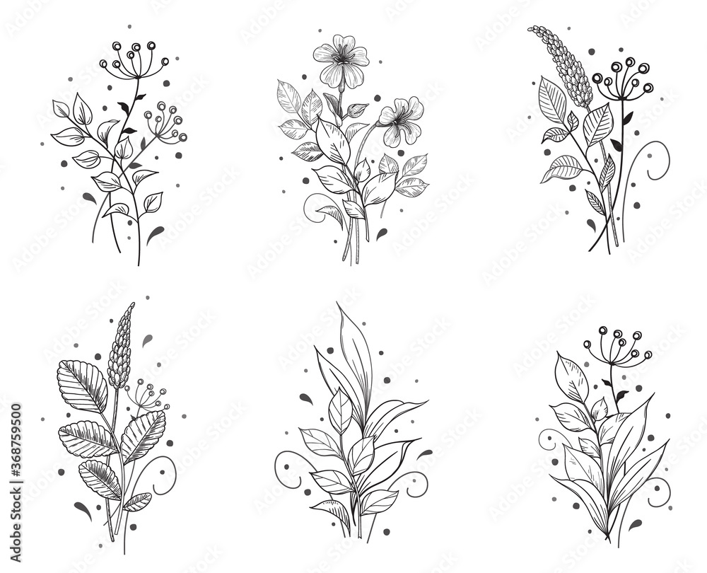 Fototapeta Hand Drawn Floral Set with Flowers and Leaves Bunches