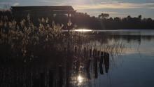 Rive D'un Lac Photographié à Contre-jour