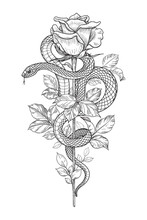 Vector Twisted Snake And Rose On High Stem