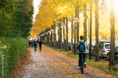 Obraz Cyclist rides a bicycle in the Tiergarten park in Berlin	 - fototapety do salonu