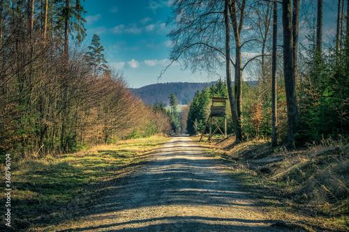 Obraz na plátně Jägerstand im Wald