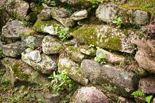 A Very Old Stone Wall With Mos...