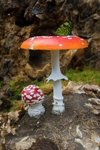 Big And Small Red Toadstool An...