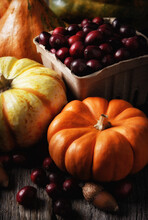 Autumn Still Life: Vertical Shot With Decorative Pumpkins Gourds And Basket Of Fresh Cranberries, With Warm Side Light.