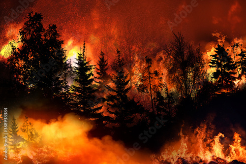 Valokuvatapetti Massive California Apple Fire forcing thousands of people to evacuate their home