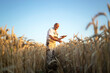 Portrait of senior farmer agronomist in wheat field checking crops before harvest and holding tablet computer. Successful organic food production and cultivation.