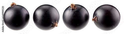 Fotografia Black currant isolated on white