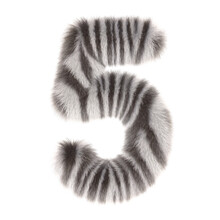 3d Zebra Creative Decorative Fur Number 5