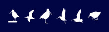A Set Of Common Snipe Drum Silhouettes. Vector Illustration