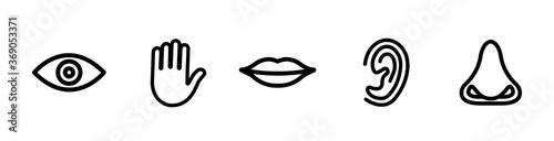 Photo Five senses vector icons set