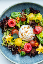 Bright Appetizing Vegetables A...