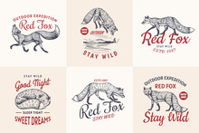 Red Fox Badges Set. Forest Gin...