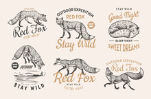 Red Fox Badges Set. Forest Ginger Wild Animal Label Or Logo. Vector Engraved Hand Drawn Vintage Old Sketch For Stamp, T-shirt Or Typography.