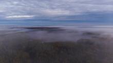 Foggy Forest Coast Under Cloudy Sky