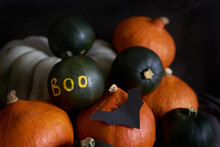 Fall Harvest Halloween Decoration At Home